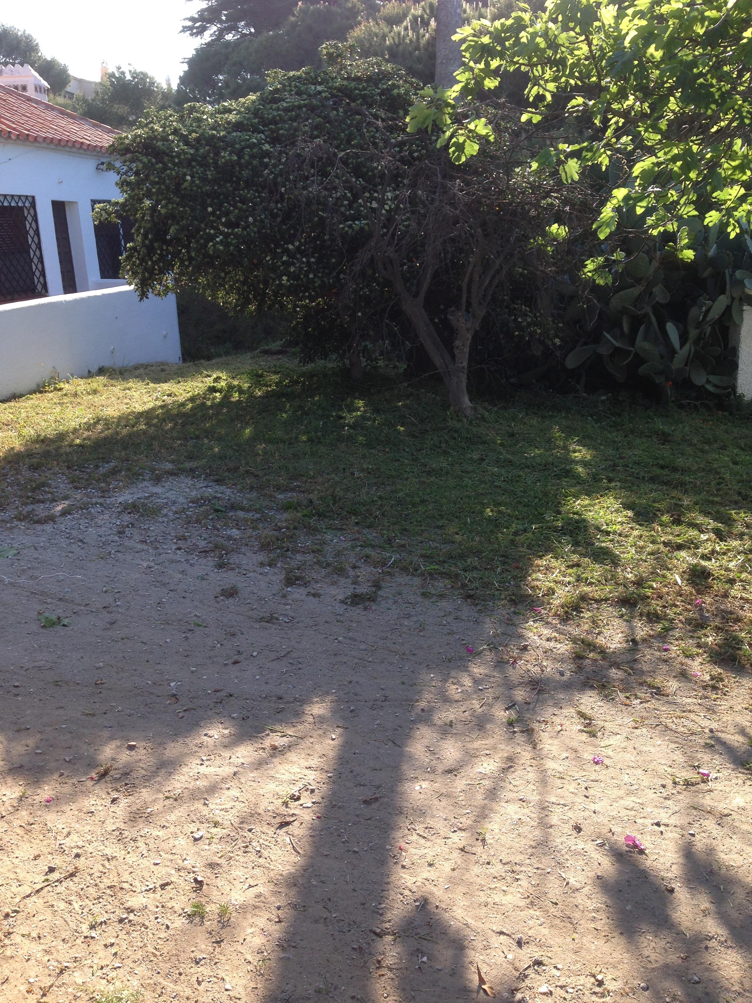 Mantenimiento y limpieza de jardines obras y servicios for Mantenimiento de jardines