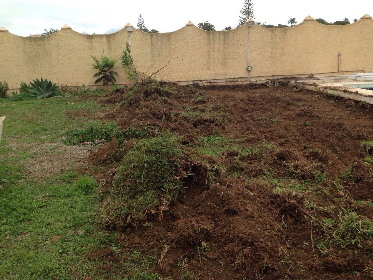 Arreglo de jardines y mini excavaciones obras y - Arreglo de jardines ...